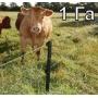 Электропастух для крс и овец