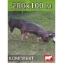 Электропастух для СВИНЕЙ на 200х100 м. (полный комплект) СТАТИК