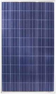 Солнечная батарея 250 Вт ReneSola Virtus II Китай